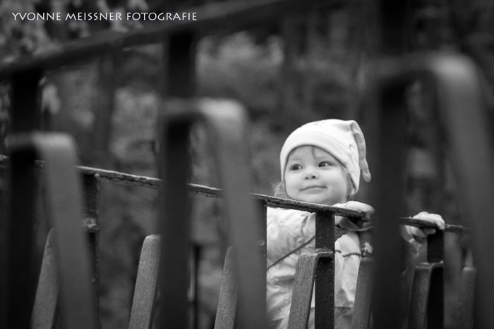 Fotografie Wernigerode