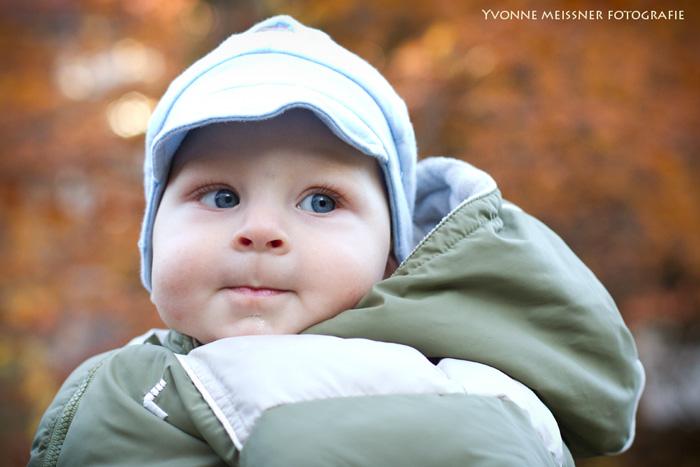Babyfotografie Wernigerode